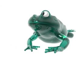 Glass Frogg